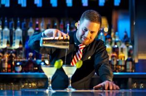 Bartender Cucumber Gin Martini