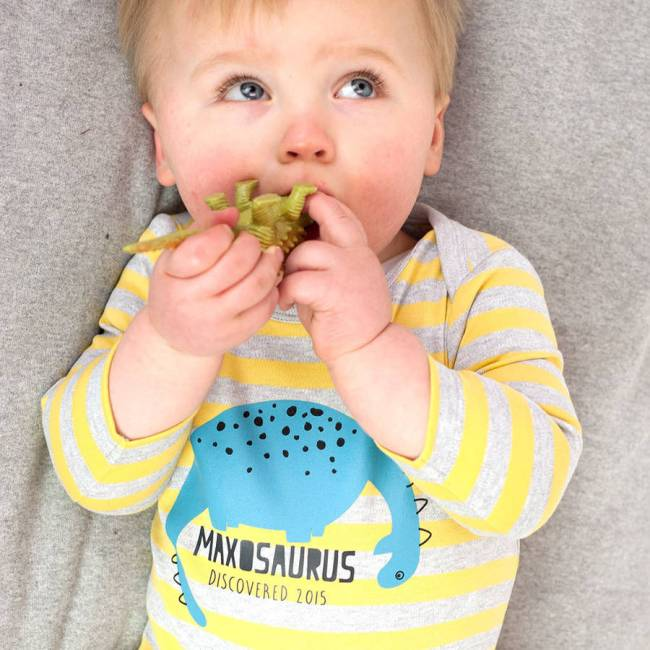 original_baby_dinosaur_t_shirt_personalised